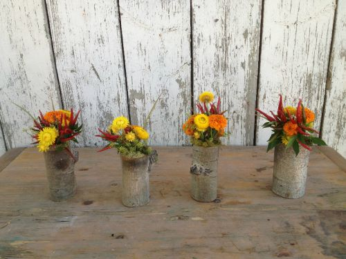 Simple natural vases