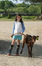 Some kids walk dogs, ours walk calves