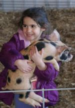 Julia with a piglet