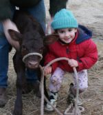 our daughter Lexi with a calf