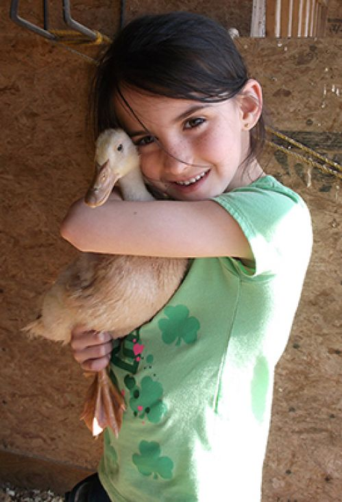 Farm Camp - a summer day camp for kids in North Eastern Connecticut, Southern Massachusetts