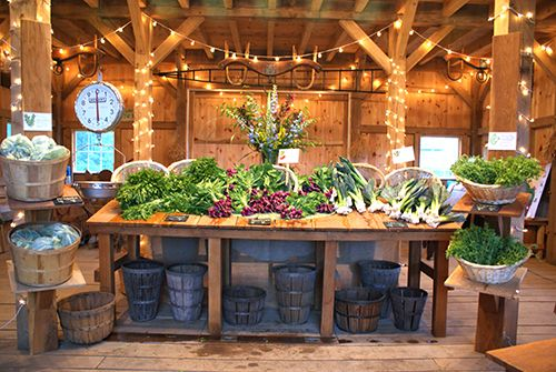 Beautiful CSA shares at Devon Point Farm