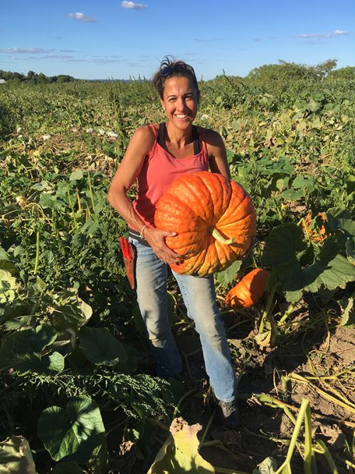 We grow amazing specialty pumpkins...