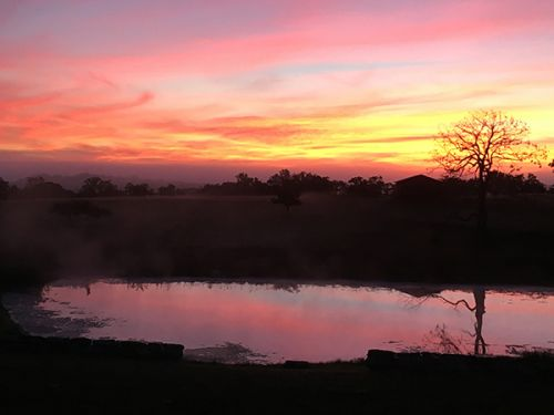 Sunrise at Devon Point Farm...