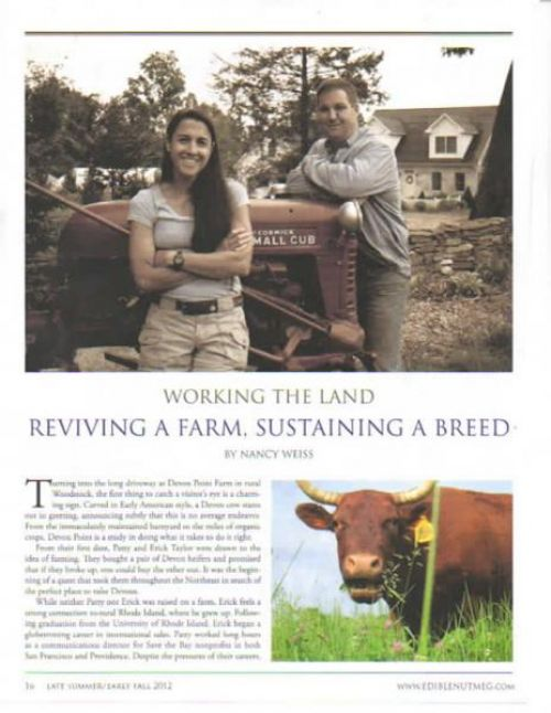 Best Grassfed Beef in CT - Connecticut Grass fed Beef Farm - CSA Vegetable Farm Shares