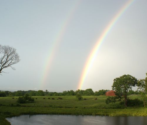 a double rainbow at Devon Point Farm