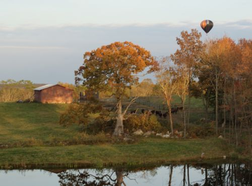 a hot air balloon hovers over the farm in autumn