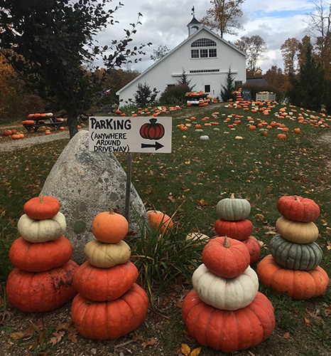 Stacking Pumpkins, Specialty Gourds and Pumpkins and our Pick Your Own Pumpkin Patch