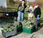 Late Season bounty with Diane, Teri & Shellie