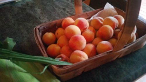 Peaches from our yard