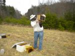 Colin installing bee packages