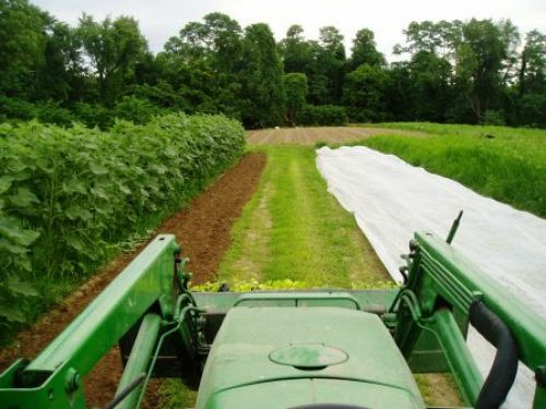 The view from the tractor