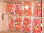 Strawberries from C. Detwiler Farm