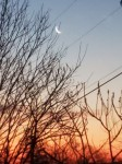 Sunrise with moon sliver