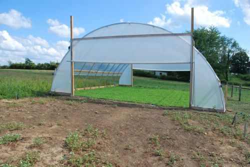 Greenhouse at NuWay Farm