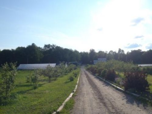 Nu-Way Farm, looking from road onto farm