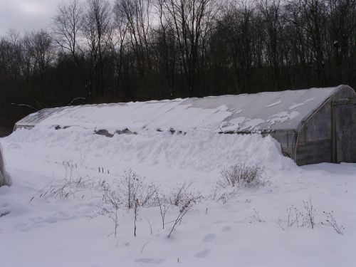 Snow-Buried High Tunnel