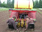 Heather and Tim on the transplanter