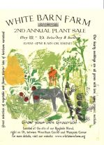 Heather Willey's 2010 Plant Sale Poster