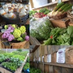 Farmstand Montage