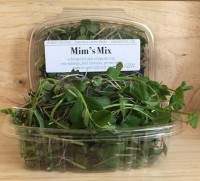 Produce: Mike's Micros, Mim's Mix