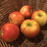 Produce: Fairmount Apples, Honey Crisp
