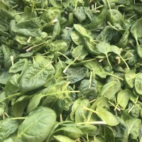 Produce: Spinach, 1 lb bag