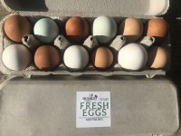 Eggs: Birchwold Farm