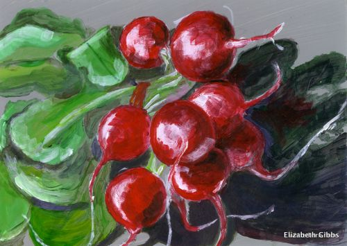 Red Radishes - 10 bunches