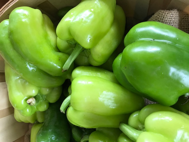 Peppers - Bell