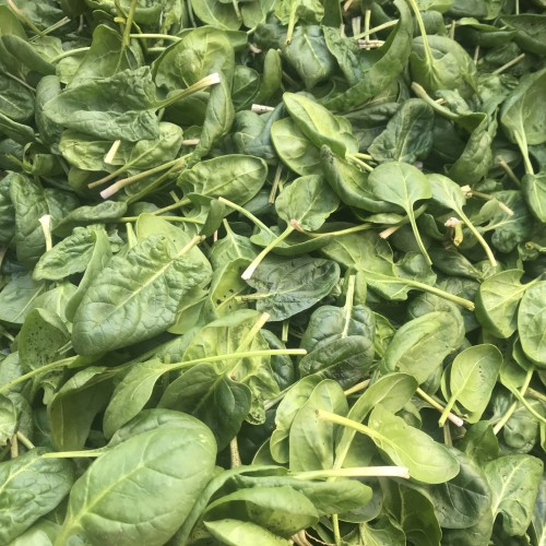 Produce: Spinach