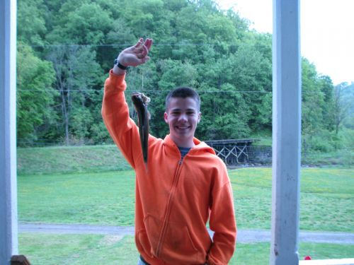 A Trout from Abram's Creek on the farm -