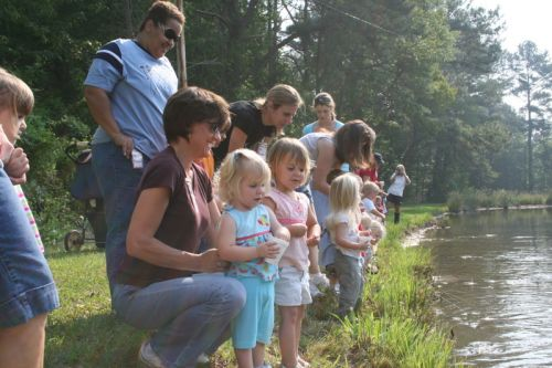 Kids feeding the fish on a field trip