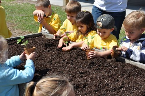 Young Future Farmers