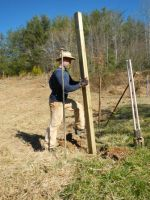 Jason building new deer fence