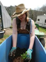 Lizzy potting up tomatoes