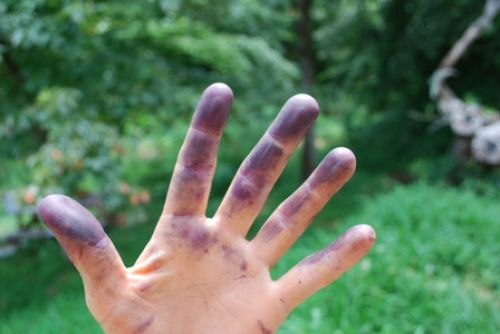 One of the many farmer's hand colors