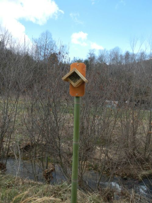 The finished native bee nesting site
