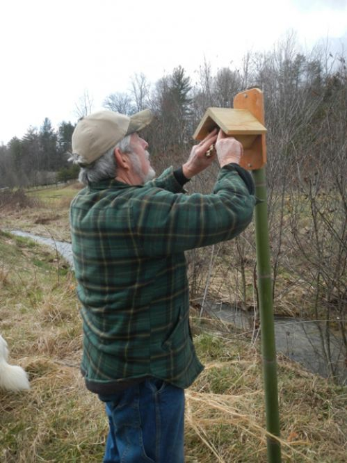 Randy installing a native been nesting site