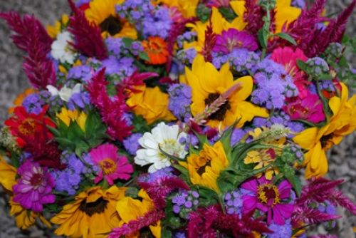 Shiloh's mixed bouquets