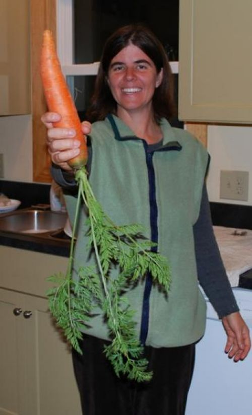 the largest carrot!
