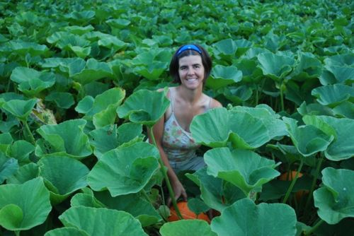 Shiloh in the sea of winter squash