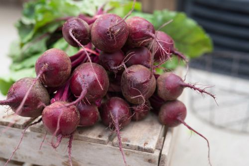 Red Beets (30 lb case)