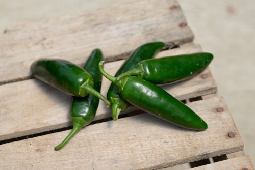 Jalepeno Peppers (10 LB box)