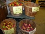 sustainably grown local apples