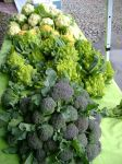 Cauliflower and Broccoli Table