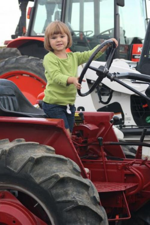 Honey posing on the tractor