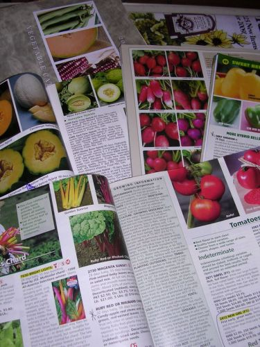 The seduction of seed catalogs.