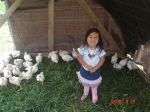 Ella, from West Liberty Farm, with the pastured poultry