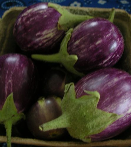 Asian eggplant at market